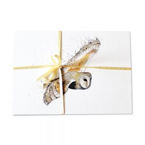 Barn Owl Post Cards | Pack Of 10