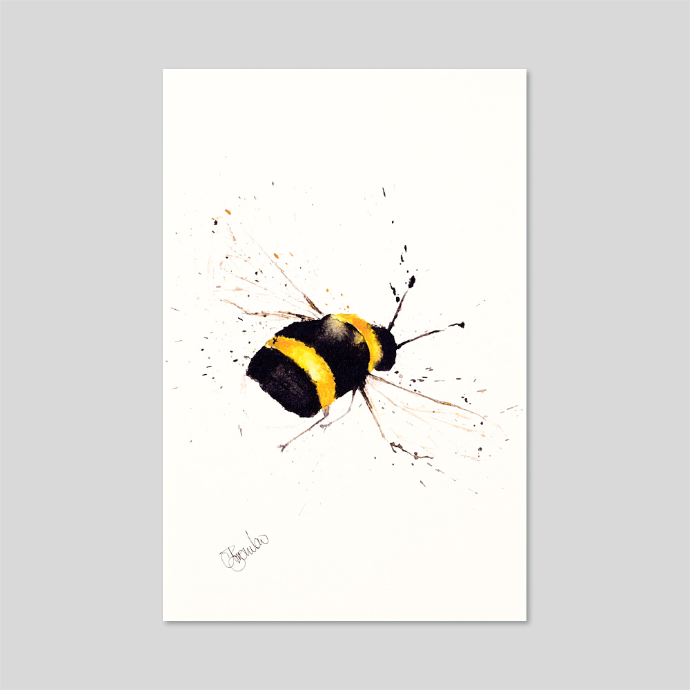 Bumble Bee Mounted A4 Limited Edition Print