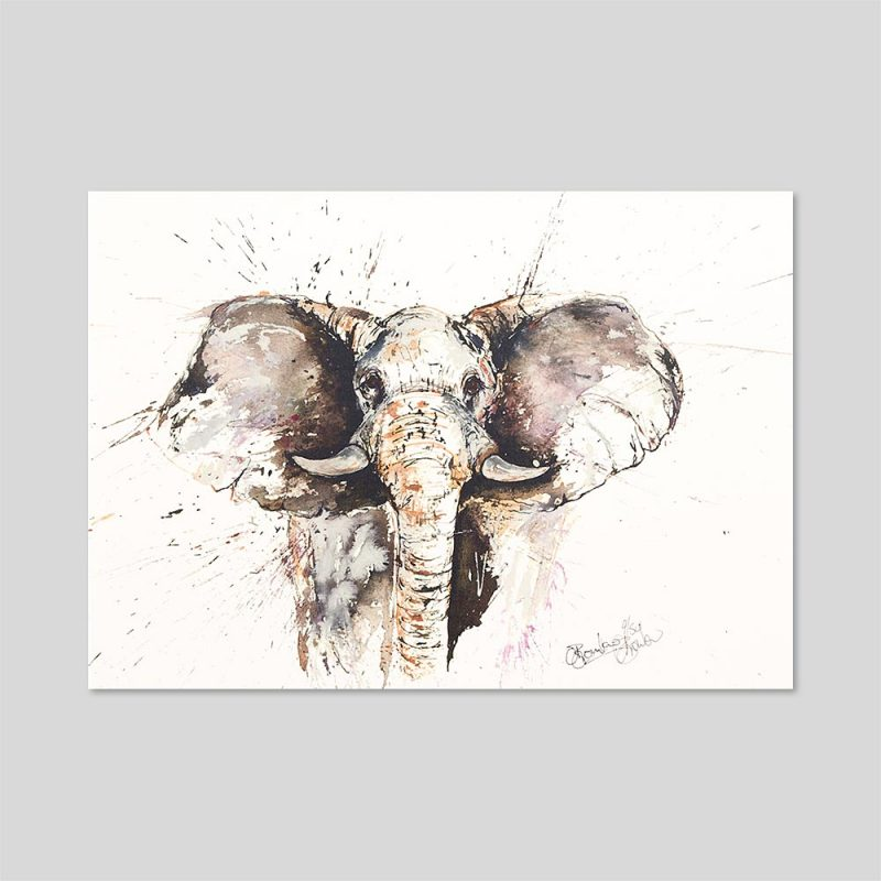 Elephant Limited Edition Of 50 Signed Print A3