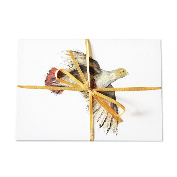 English Partridge Post Cards | Pack Of 10
