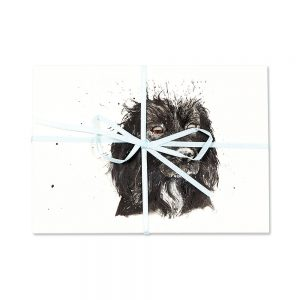 Black Cocker Spaniel Post Cards | Pack Of 10