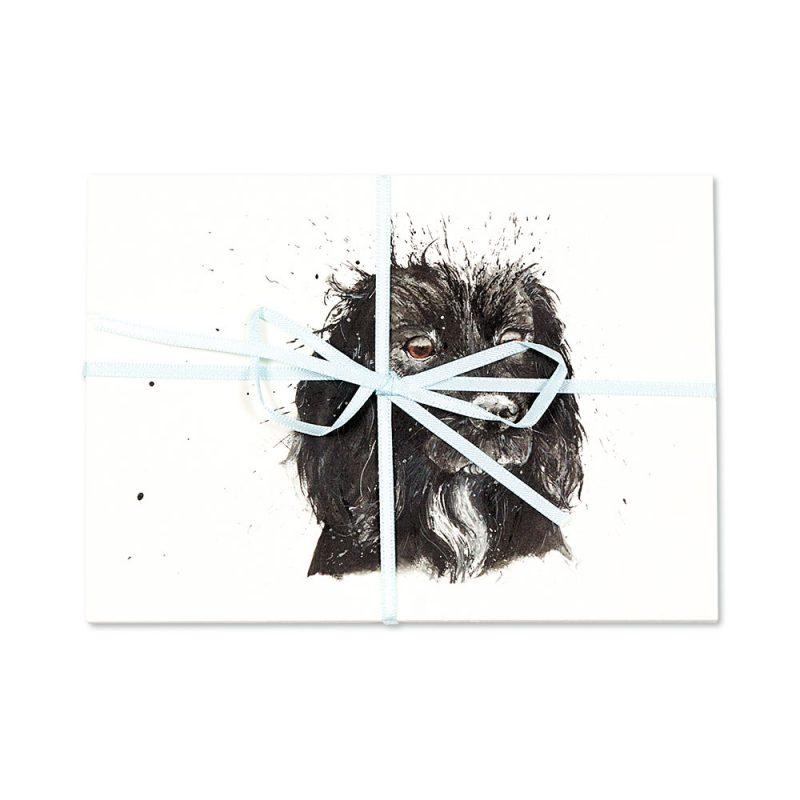 Black Cocker Spaniel Post Cards   Pack Of 10