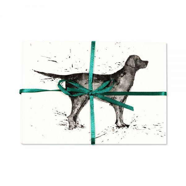 Black Labrador Post Cards | Pack Of 10