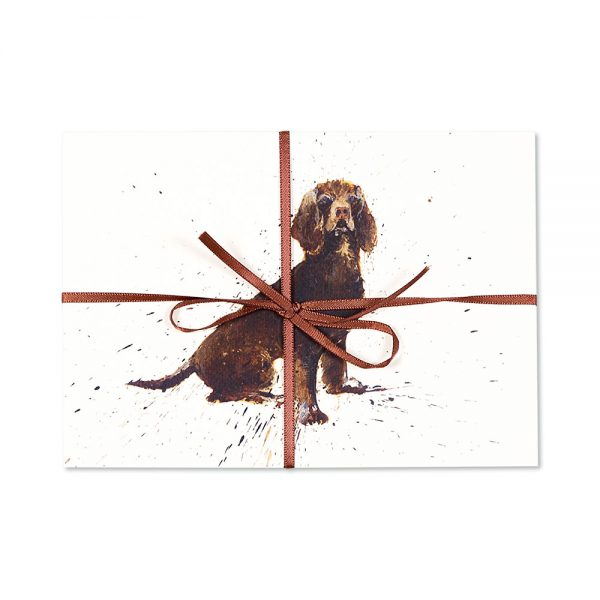 Brown Spaniel Post Cards | Pack Of 10