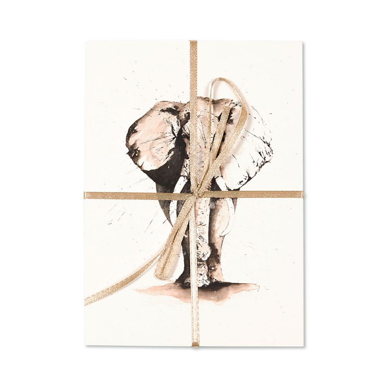 Elephant Post Cards | Pack Of 10