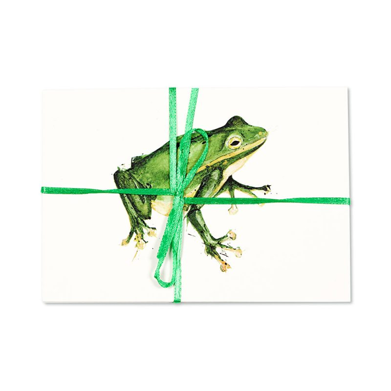 Frog Post Cards   Pack Of 10