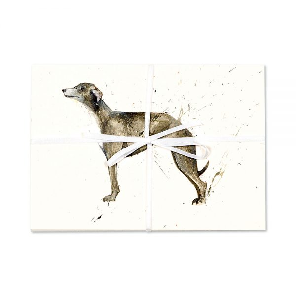 Greyhound Post Cards | Pack Of 10