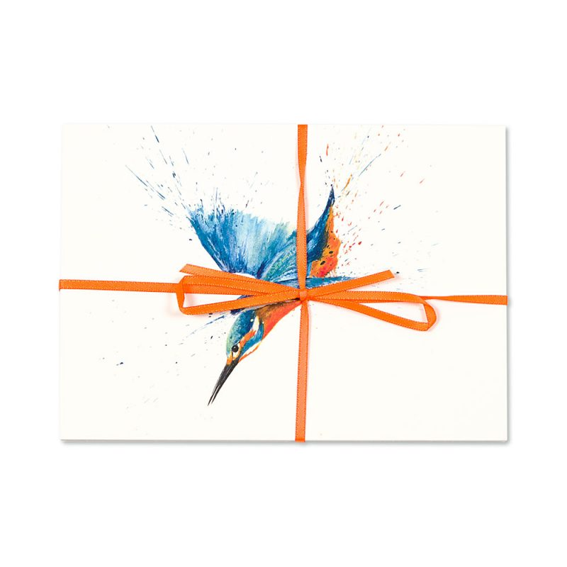 Kingfisher Post Cards | Pack Of 10