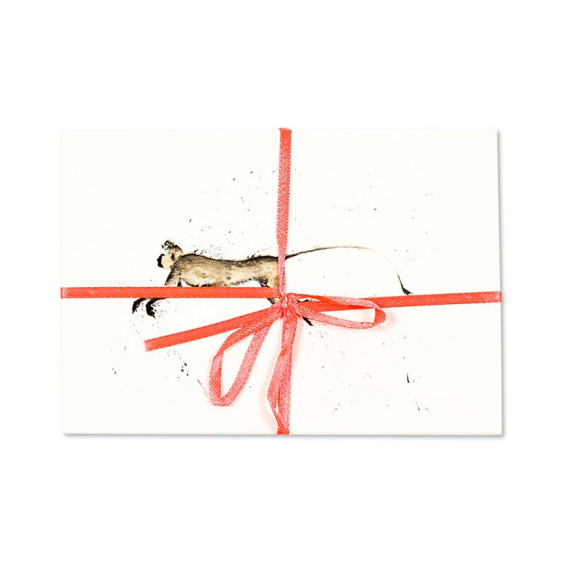 Monkey Post Cards | Pack Of 10