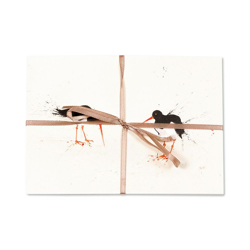 Oyster Catcher Post Cards   Pack Of 10