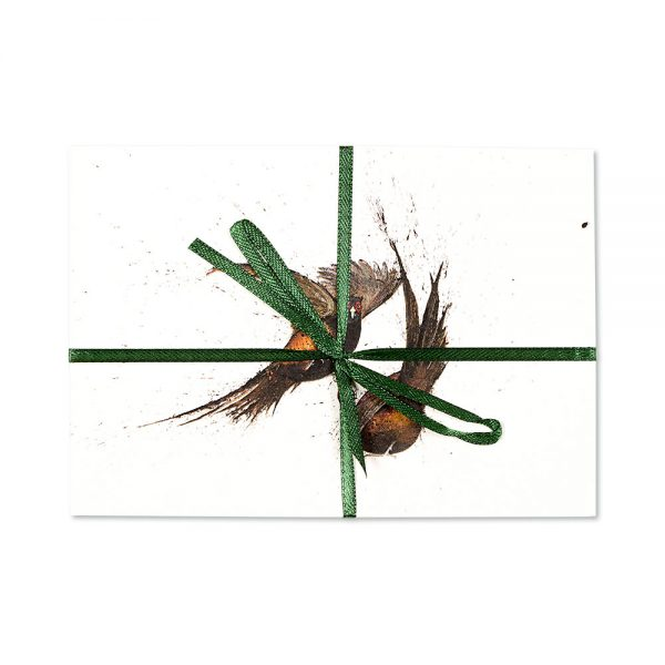 Pheasants Fighting Post Cards | Pack Of 10