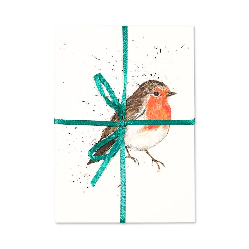Robin Post Cards | Pack Of 10