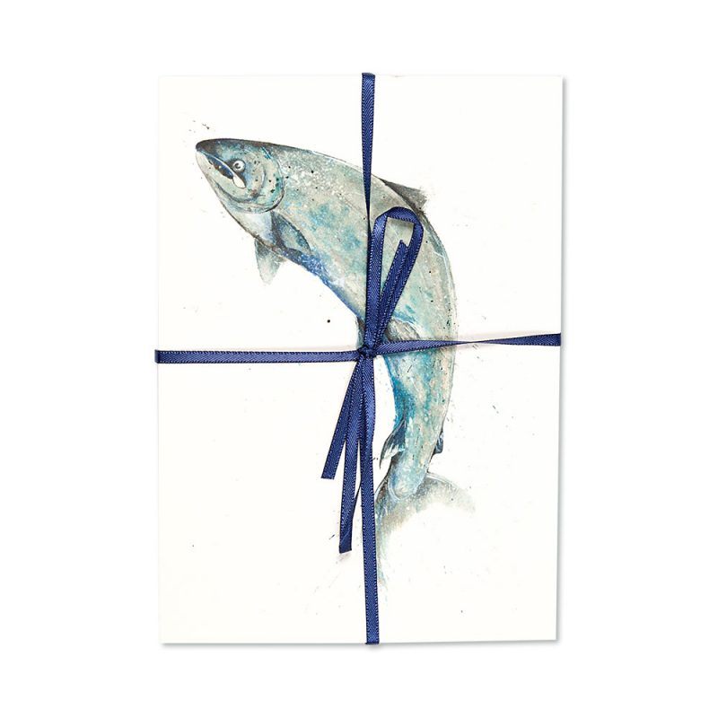 Salmon Leaping Post Cards   Pack Of 10