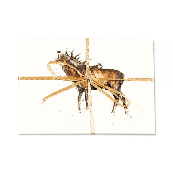 Stag Roaring Post Cards | Pack Of 10