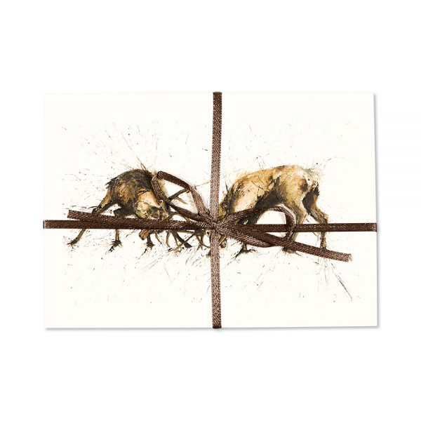 Stags Rutting Post Cards | Pack Of 10