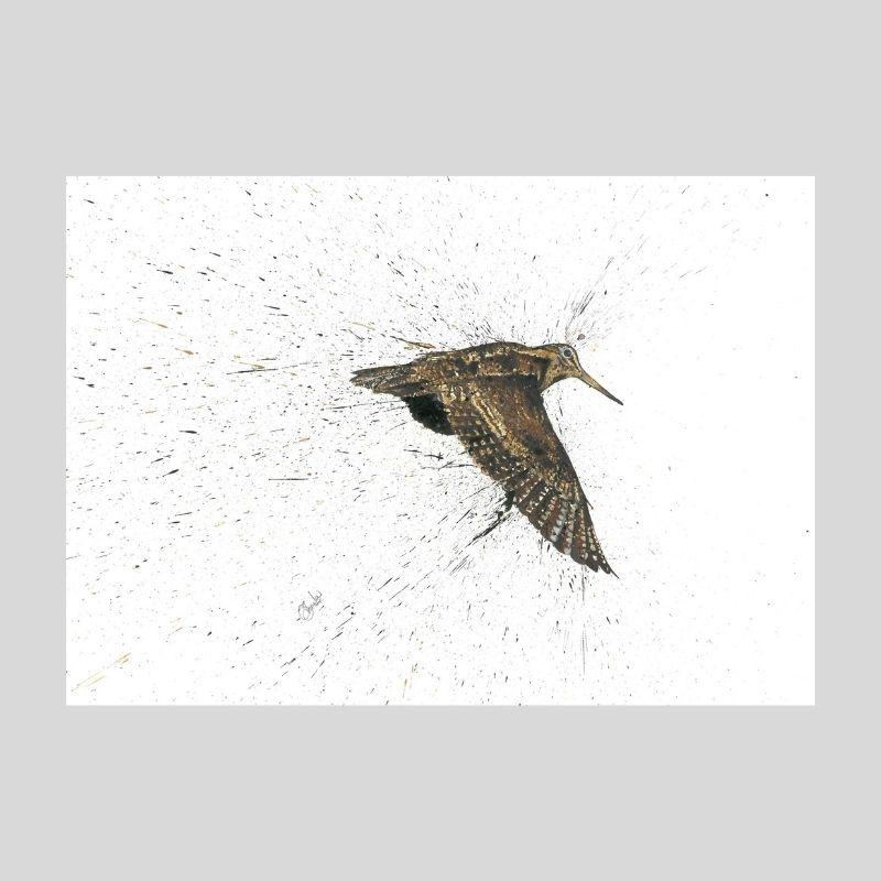 Woodcock Print